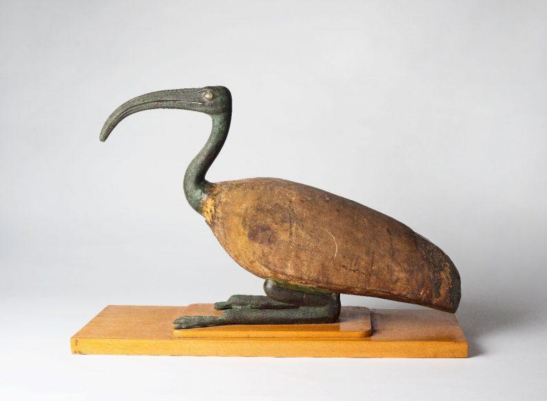 מומיה במוזיאון ישראל