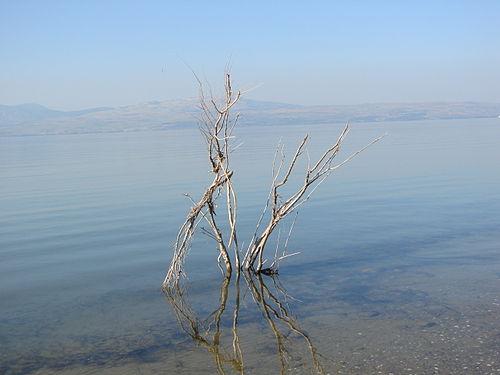 מאבק בבצורת: הממשלה אישרה תוכנית לשיקום משק המים