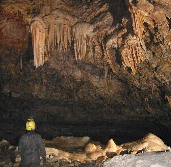 אחרי 9 ימים: סוף טוב לדרמה בתאילנד. קבוצת נערים שנעלמה במערה נמצאה בחיים