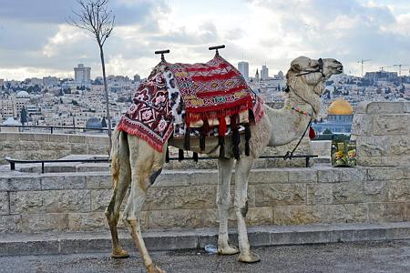 שיא של כל הזמנים בתיירות לישראל