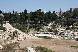 לראשונה בישראל: צועדים עם יהדות העולם